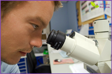 microscope IMSI