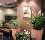 Art-IVF Clinic Of Reproductive Health0